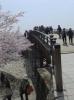 錦帯橋の出口