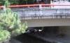 橋の下に鹿