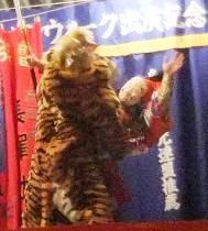 虎に襲われた