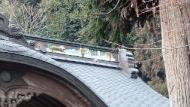屋根が湾曲している