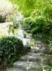 滝への階段
