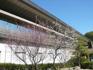 熱田会館(2011.2.21)