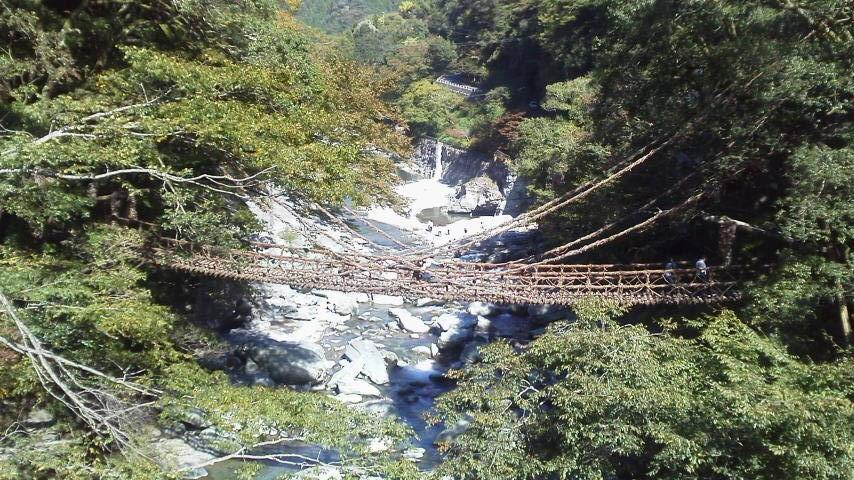 かずら橋.jpg