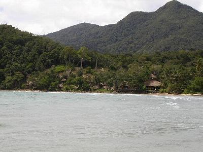 Long beach の Tree house lodge