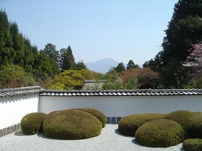 正伝寺の庭