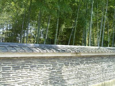 大徳寺の竹林