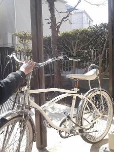 直った自転車と鳥・鳥は何処だ?