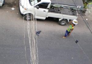 別のペービョー売りの女性と、電線には鳩