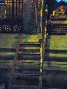 猫は此処。階段の一番上、右端。丸まってじっとしていた。