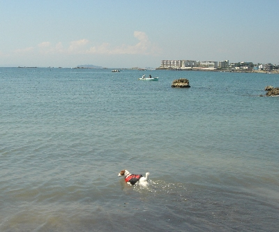 一色海岸1