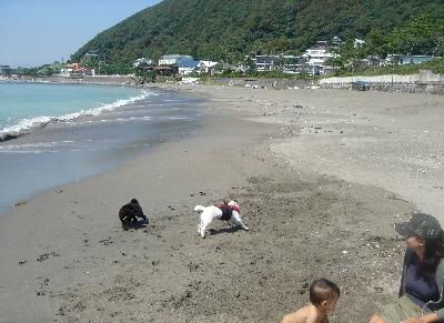 一色海岸3