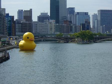 水都大阪2009 巨大アヒル