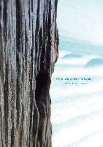 THE SECRET BEACH ART LINE PROJECT