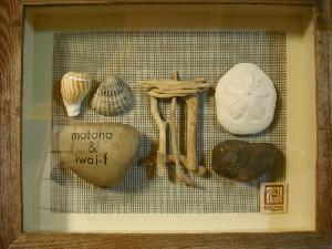 貝と流木と石