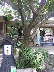 広沢のお池茶屋