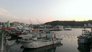 宇和島湾 漁船