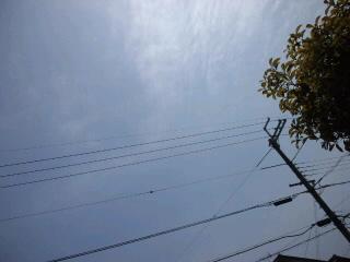 CA3J0046.jpg