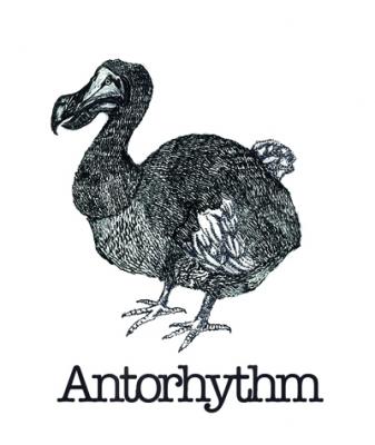 Antorhythm.jpg