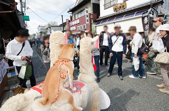 2014_9_27c.jpg