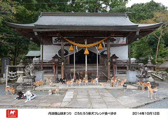 2014_10_12_3.jpg