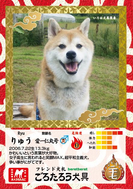 A7たて_表面ryu.jpg