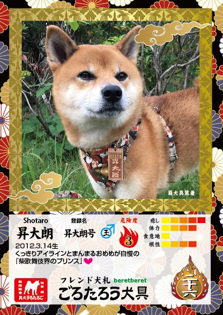 A7たて_表面shotaro.jpg