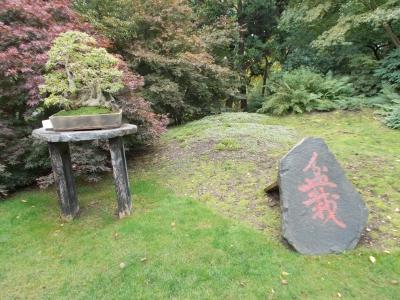 ボタニカル・ガーデンの日本庭園