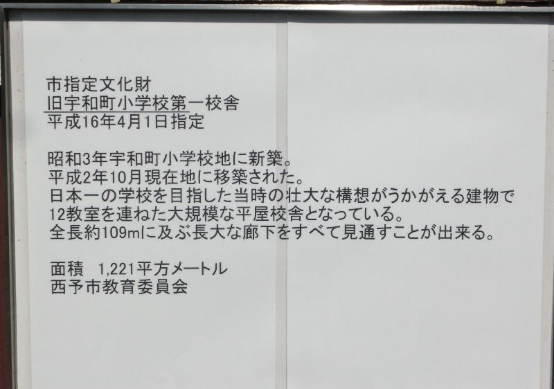 CIMG4342.JPG