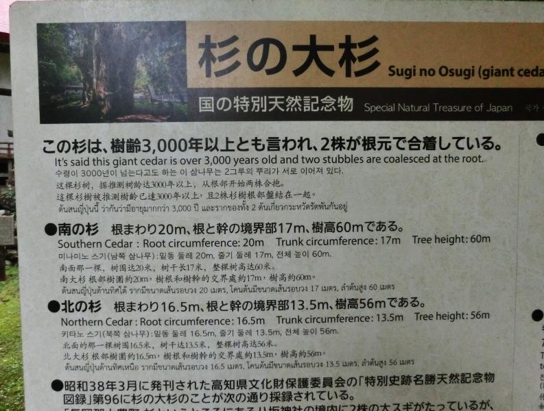 CIMG9489.JPG