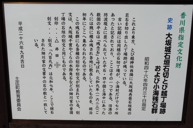IMG_5761.JPG