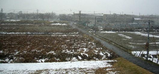 雪の名古屋郊外