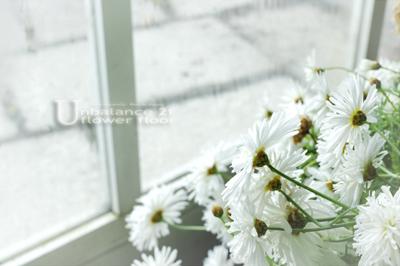 fragrant memory