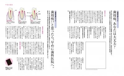 5-6歯  (1).jpg
