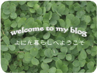 welcome to my blog