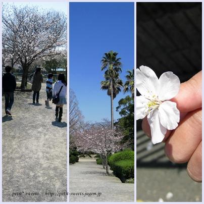 思い出の散歩。
