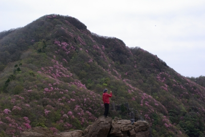 兜岩から西赤石山