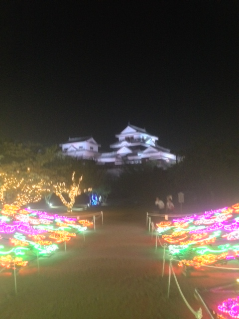 光の花壇と松山城