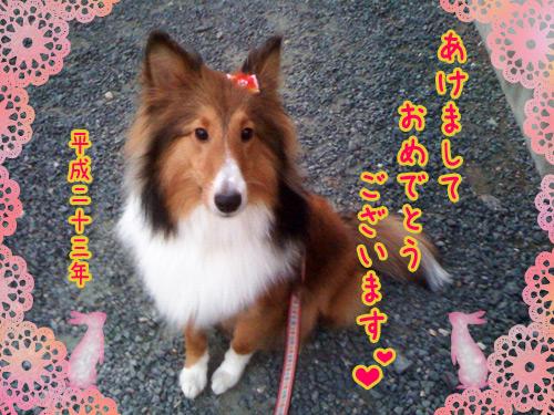 写真_110108_02.jpg