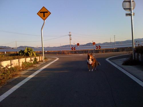 写真_110121_02.jpg