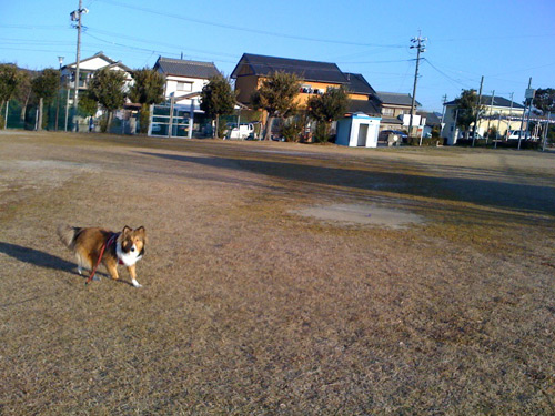 写真_110121_09.jpg