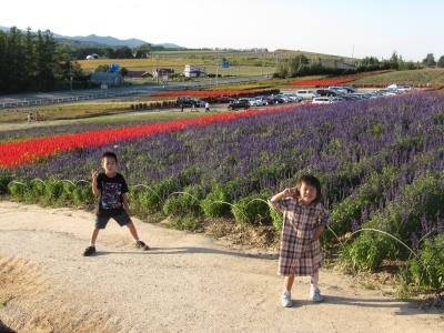 Images of 上富良野町 - JapaneseClass.jp