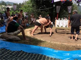 2015相撲4