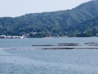 遠くに見える厳島神社のイメージ