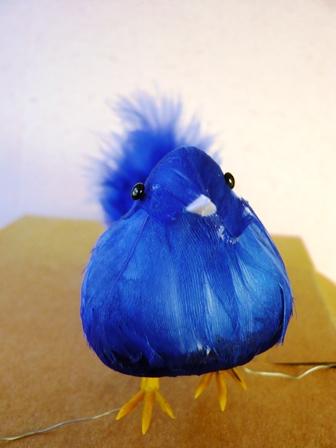 青い鳥正面