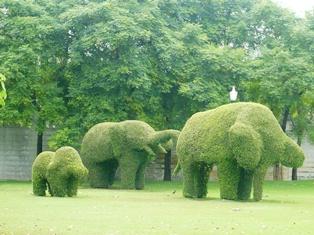 宮殿内の庭