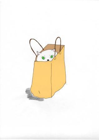 紙袋ねこぉ