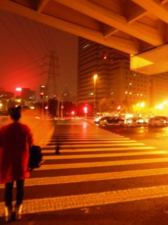 超長い横断歩道