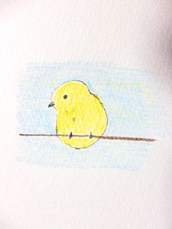 鳥イラスト