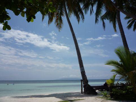 Cebu Travel, Bohol Trabel, Panglao Travel, Philippines