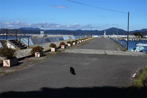 田代島4.jpg